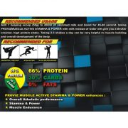 Proviz Muscle Active Stamina and Power Recommended Dosage